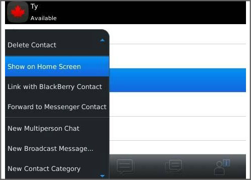 How to personalize Blackberry 6 home screen?