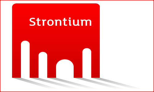 Strontium grabs 30% market share in Indian memory module
