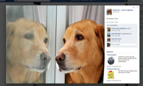 Facebook updates its photo viewer