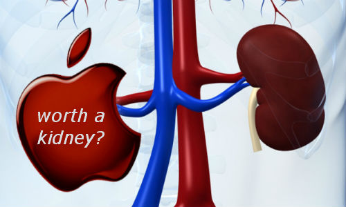 Kidney sold to get Apple iPad