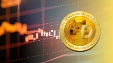 How And Where Can You Buy Dogecoin In India?