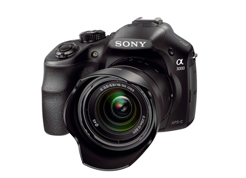 Sony SEL 1855 Photos