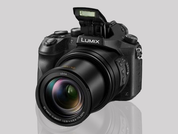 Panasonic Lumix FZ2500 Photos