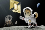 Elon Musk Announces Doge-1 Satellite: Doge To The Moon, Literally