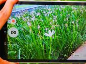 Asus ZenPad 8.0 First Impression camera