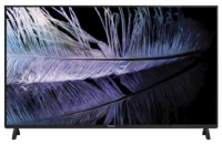 Panasonic 4K LED Smart TV (TH-55FX600D)