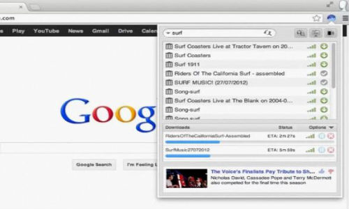 Google chrome torrent
