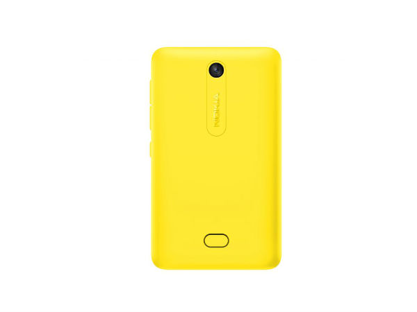 Yellow Back of Asha 501