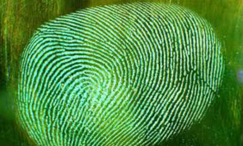 Samsung Galaxy S5 Update: Fingerprint Sensor Confirmed