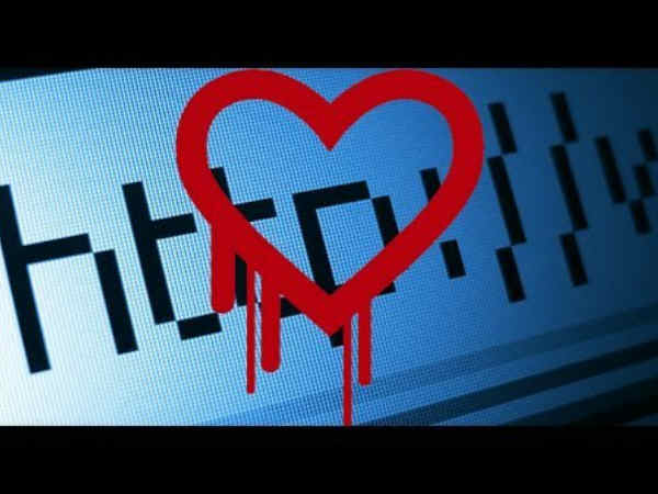 HeartBleed Bug and its Preventions: Top 5 Things to Keep in Mind