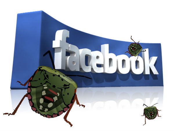 Facebook Doubles Advertising Bug Bounty
