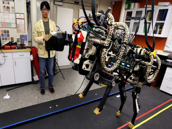 MIT Engineers Biomimic Cheetah Robot: Here's How It Looks Like