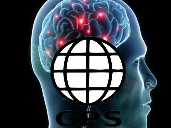 Brain's GPS System Influenced by Environment's Shape