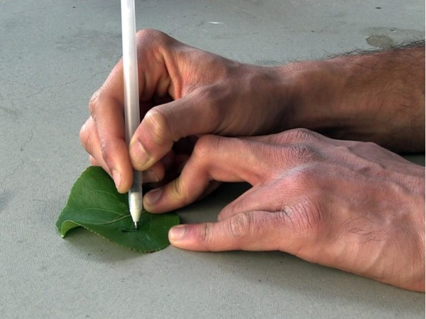 Build Sensors at Home with High-Tech Pens