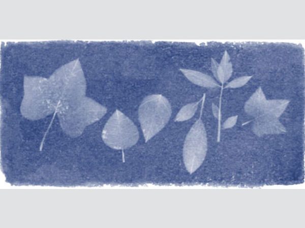 Google Today's Doodle To The Woman Who Created The First Photograph