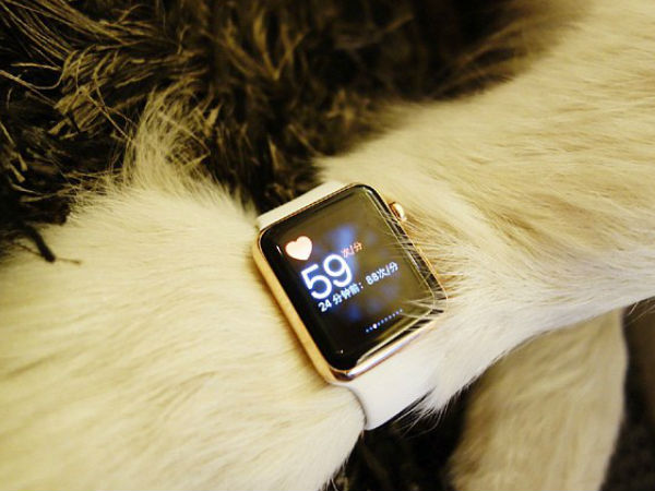 China's richest man's son gifts 2 Apple watches to pet dog