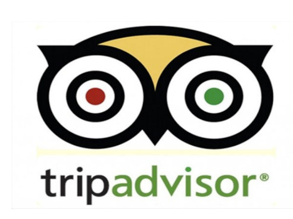 Here's TripAdvisor's New App for Android Wear Smartwatches
