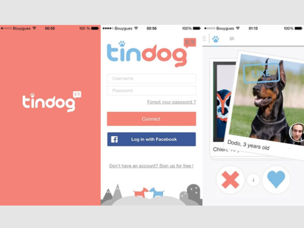 New dating apps for dogs developed