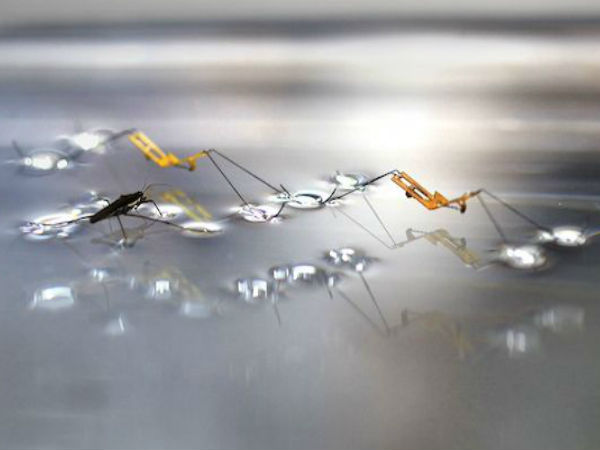 Insect-sized robot can jump on water