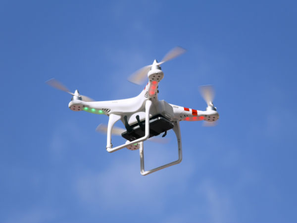 Andhra to use drone cameras to check red sander smuggling