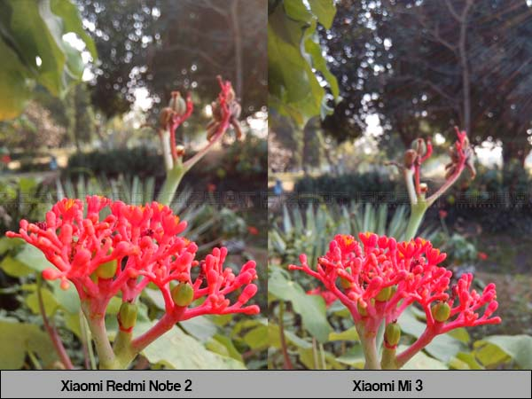 Redmi Note 2: Here Are the Pros and Cons of the Pumped Up Camera