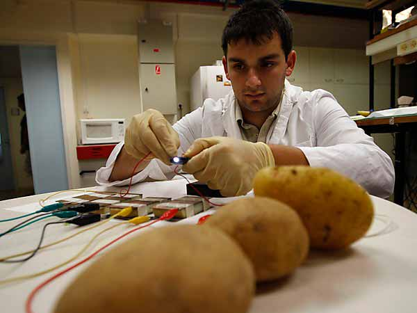 Scientist to grow potatoes on Earth under Mars conditions