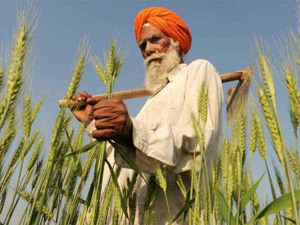 Modi launches e-market for farm produce; terms it 'turning point'