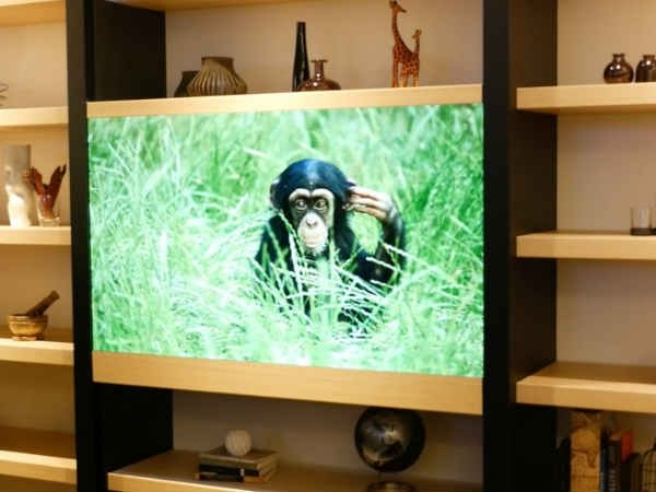 Panasonic develops 'invisible' TV that looks like a glass