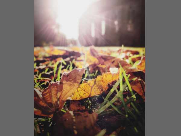 10 Tips to take best Photos for Instagram Feed