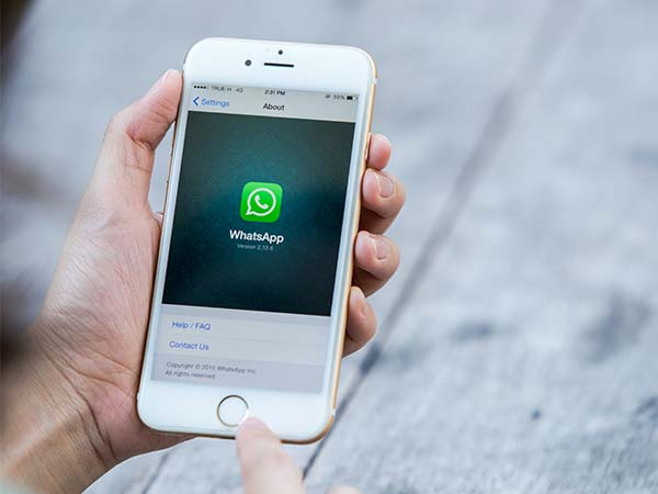 Find Out Your WhatsApp Best Friends