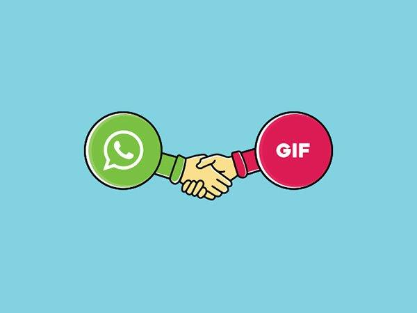 After Android, iPhone Users Can Now Create and Share GIF on WhatsApp