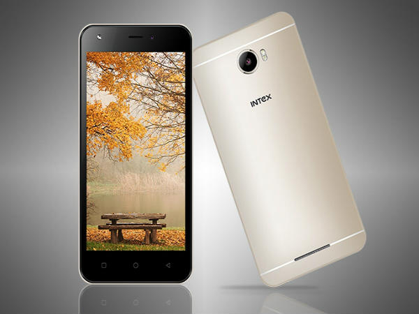 Intex aims at 40 % revenue from its accessories business: Report