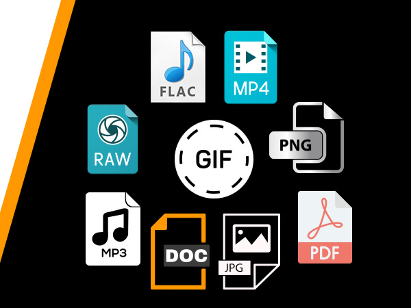 Functions of different file format explained