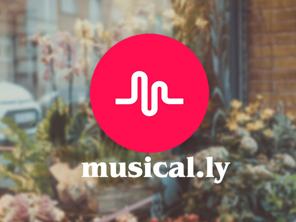 How to use Musical.ly App