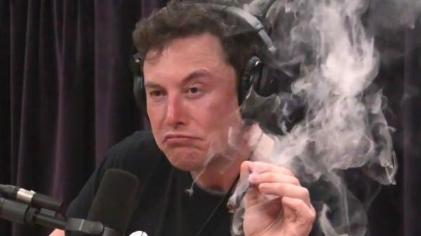 Tesla stocks plummet after Elon Musk was filmed smoking weed
