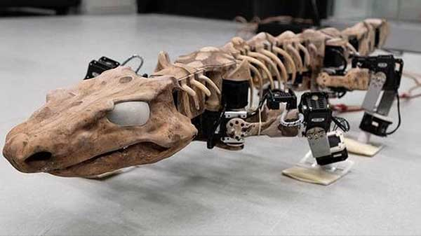 Scientists develop robot using a 290-million-years-old fossil