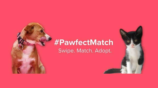 Tinder launches #PawfectMatch to amplify pet adoption in India