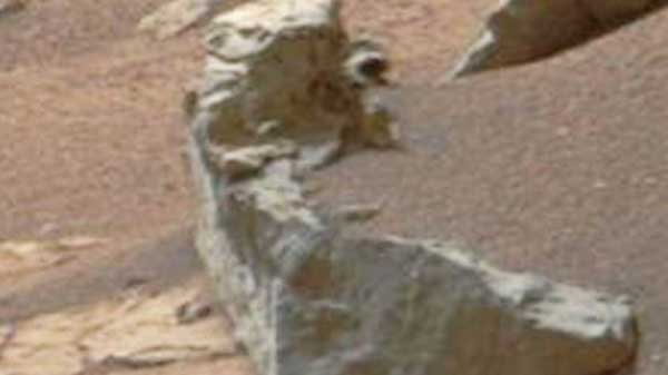 Scientist claims NASA image shows penguin lurking on Mars