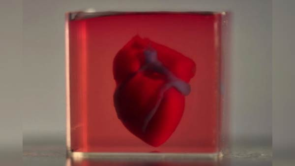 Scientists develop 3D-printed heart using living cells
