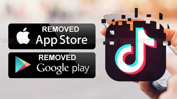 Apple and Google removes TikTok from its app stores after MeitY orders