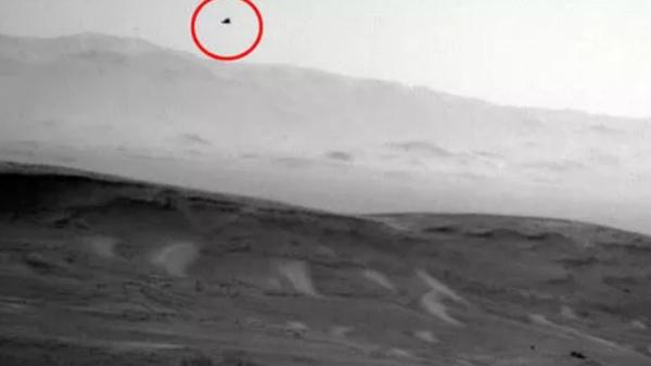 Did NASA Curiosity Rover Capture Bird-like Creature On Mars?