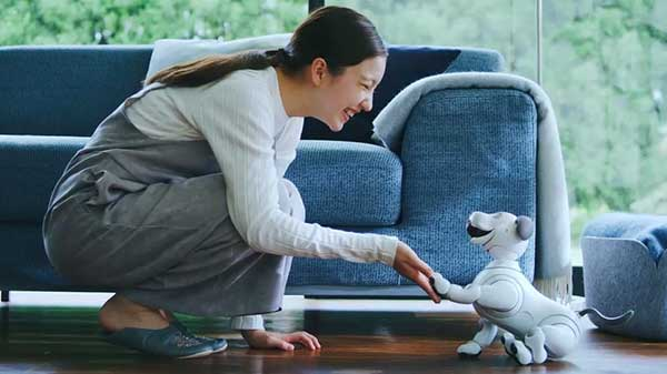 Sony Robotic Dog Aibo Can Now Perform New Tasks