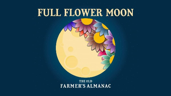 It's A Flower Supermoon Tonight And Tomorrow