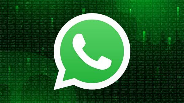 WhatsApp Introduces Cheat Codes Feature; New Shortcut MacOS, Windows