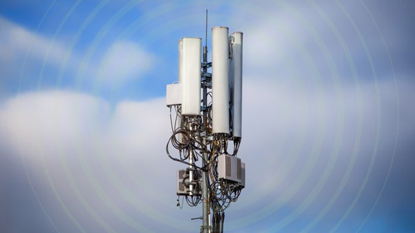DoT Assigns Frequencies To All Spectrum Auction Bidders