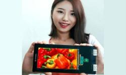 LG Announced 5.5 inch High Resolution Quad HD Smartphone Display