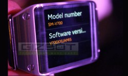 Samsung Galaxy Gear To Be Compatible With 7 Other Galaxy Devices Soon