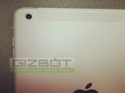iPad 5 And iPad Mini 2: Next-generation Apple iPads To Feature High Quality 8MP Cameras