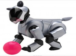 Robopets to replace your loving dog soon