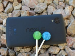Google Nexus receives software update, finally gets rid of Android bugs!